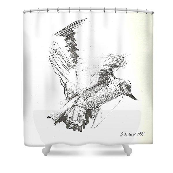 Flying Bird Sketch Shower Curtain
