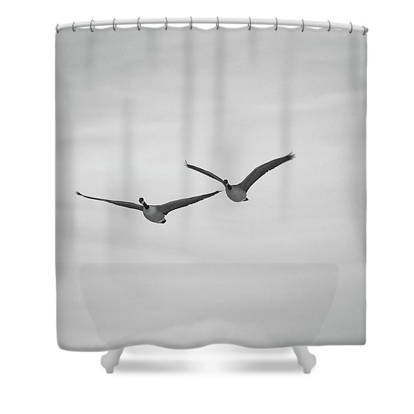 Shower Curtain featuring the photograph Flying Companions by Jason Coward