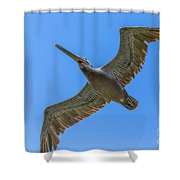 Flying Dino Shower Curtain