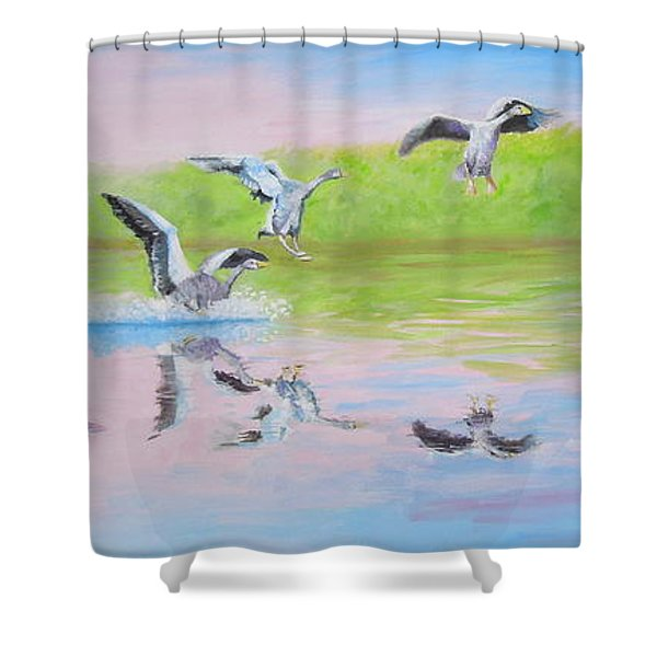 Flying Geese Shower Curtain