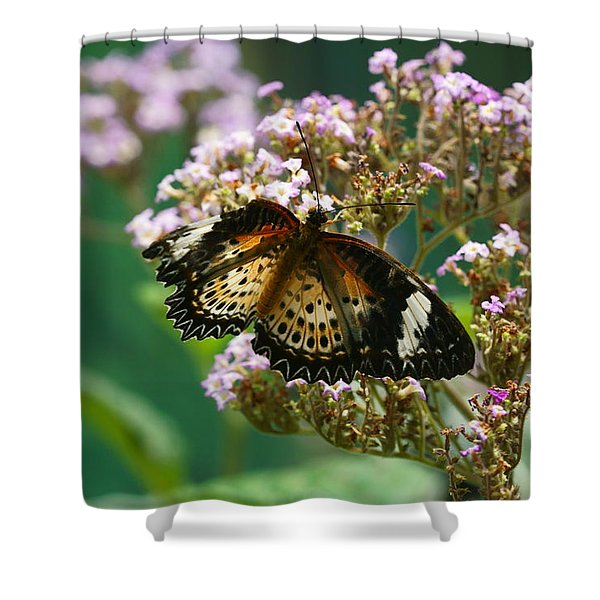 Flying High 1 Shower Curtain