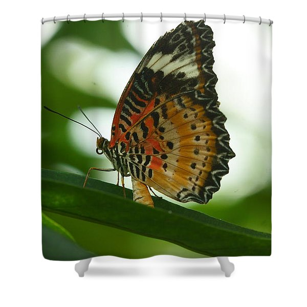 Flying High 4 Shower Curtain