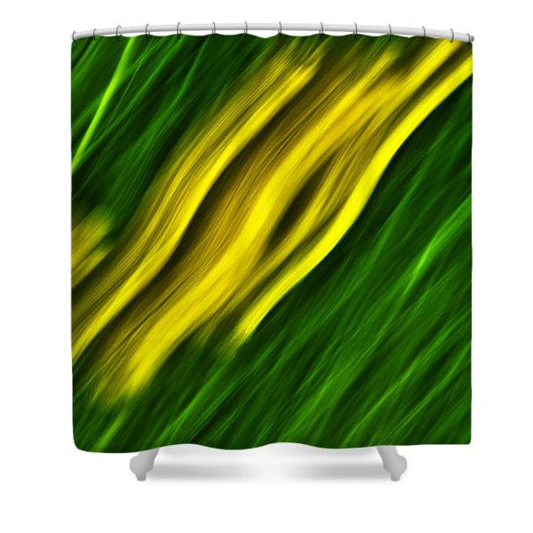 Flying Dragons Shower Curtain