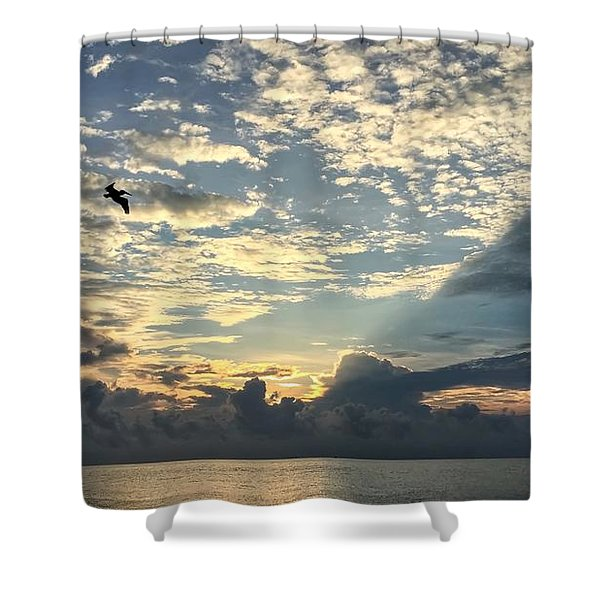 Flying To The Left Shower Curtain
