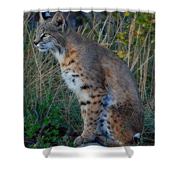 Focused On The Hunt 2 Shower Curtain