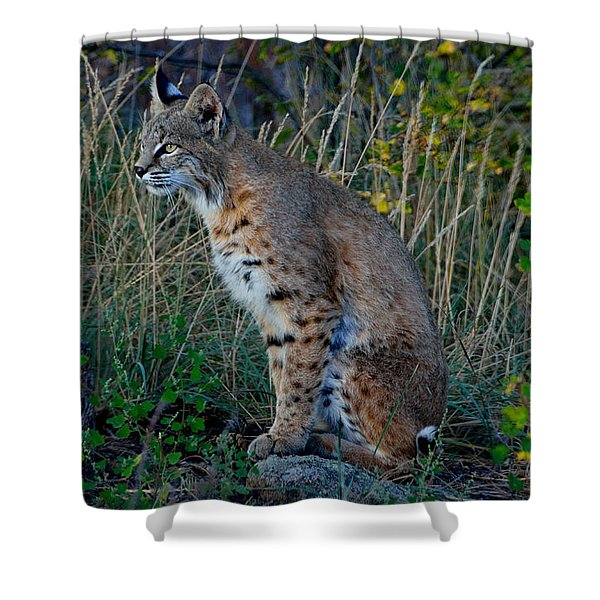 Focused On The Hunt Shower Curtain
