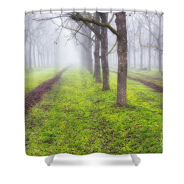 Fog And Orchard Shower Curtain