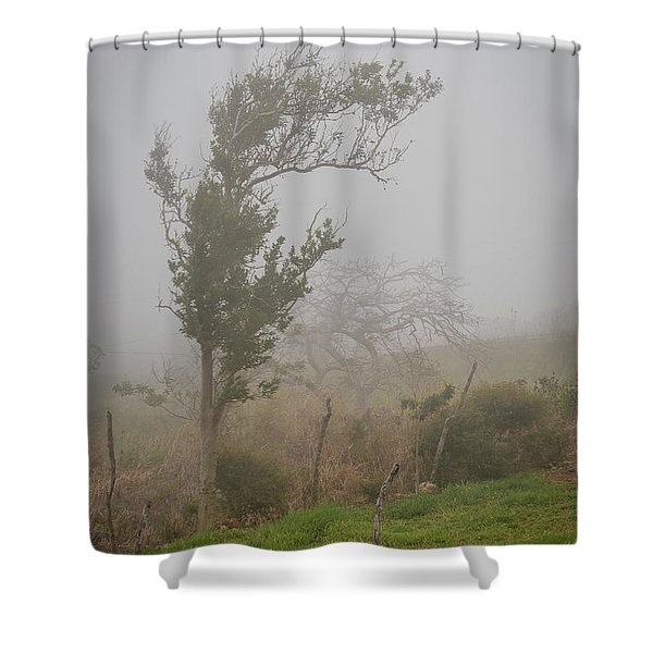 Fog And Wind Shower Curtain