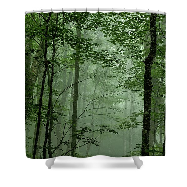 Fog In The Forest Shower Curtain