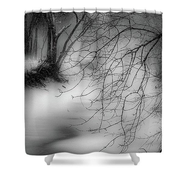 Foggy Feeder Shower Curtain