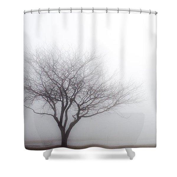Foggy Picnic Shower Curtain