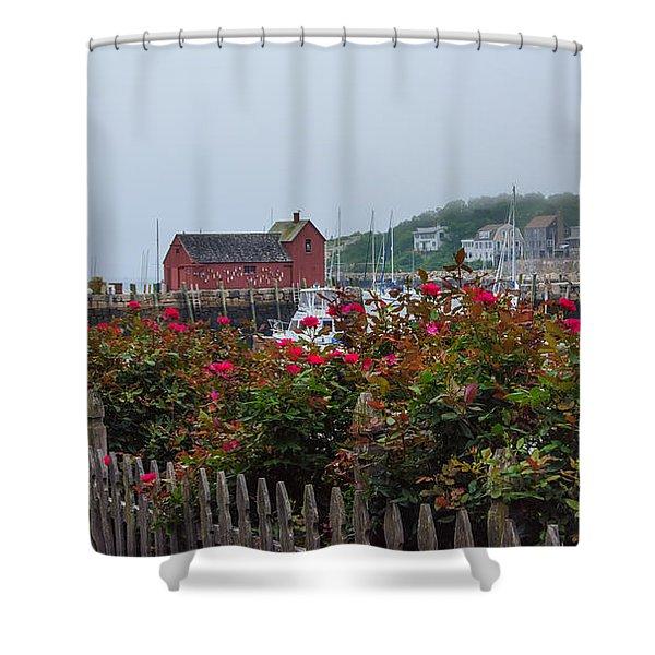 Foggy Roses Shower Curtain