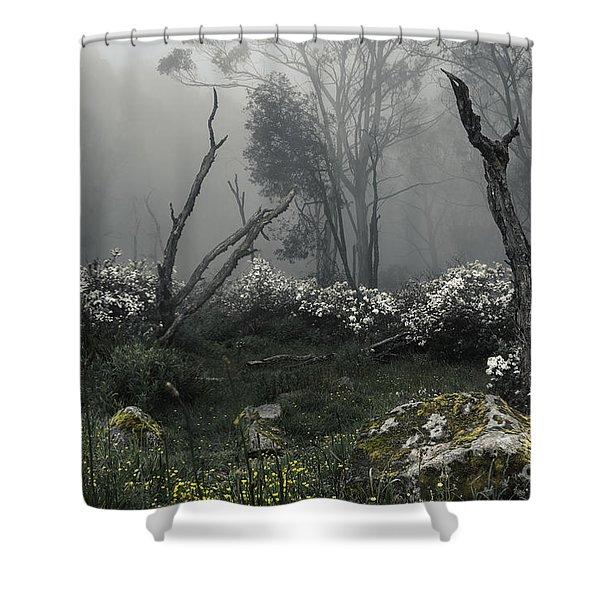 Fogscape Shower Curtain