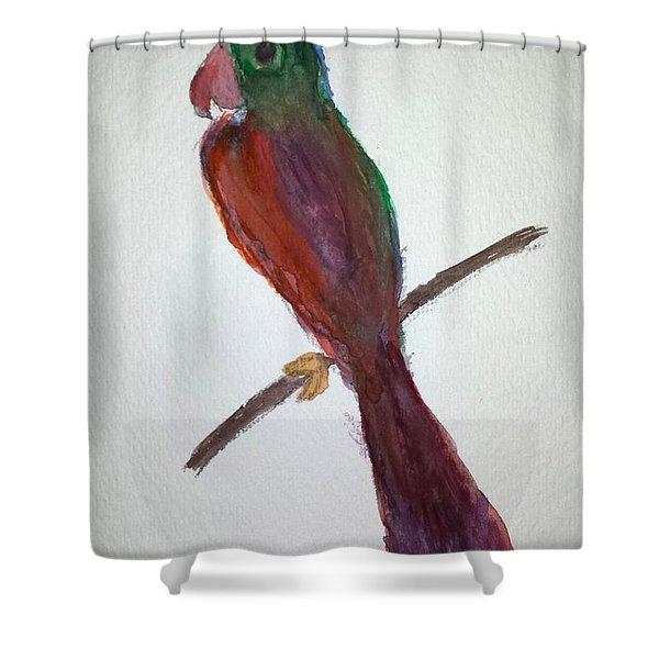 Folk Art Parrot Shower Curtain