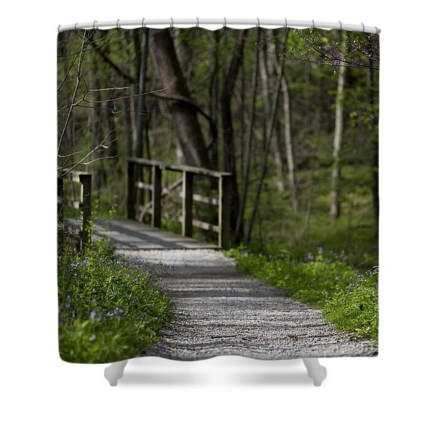 Shower Curtain featuring the photograph Follow The Path by Andrea Silies