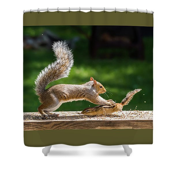 Food Fight Squirrel And Chipmunk Shower Curtain