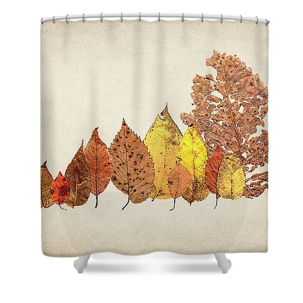 Forest Of Autumn Leaves II Shower Curtain