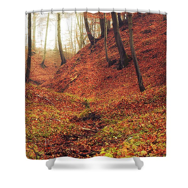 Forest Of November Shower Curtain