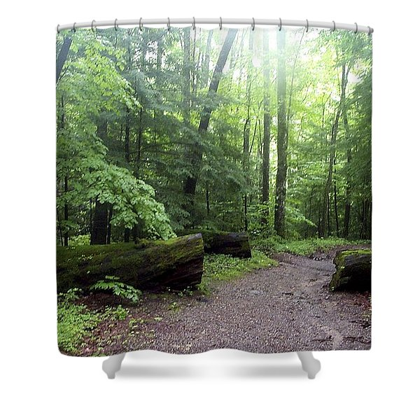 Forest Setting Smoky Mountains National Park Shower Curtain