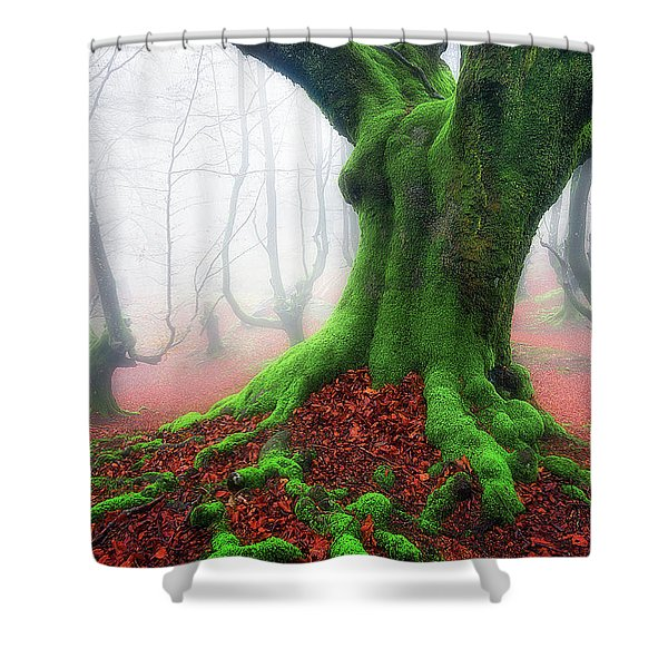 Forest Speeches Shower Curtain