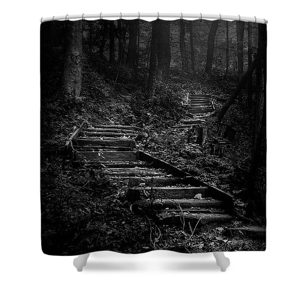 Forest Stairs Shower Curtain