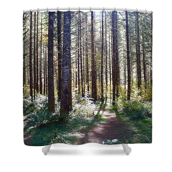 Forest Stroll Shower Curtain