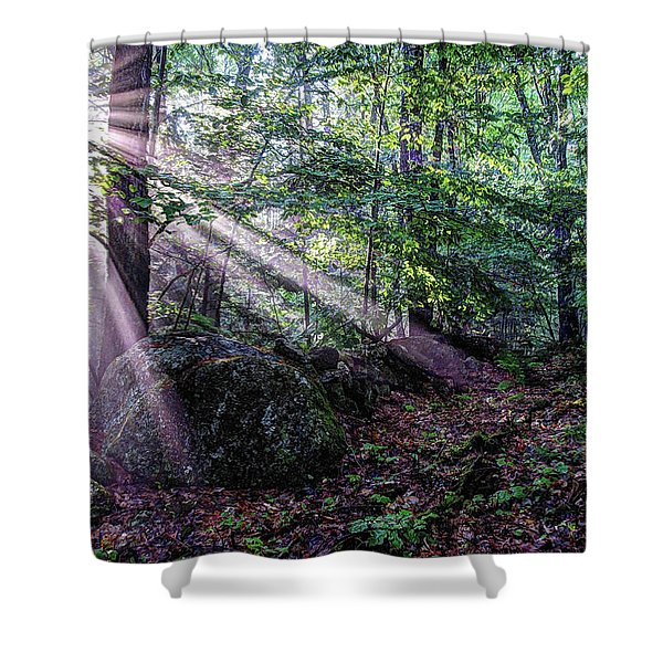 Forest Sunbeams Shower Curtain