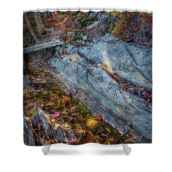 Forest Tidal Pool In Granite, Harpswell, Maine  -100436-100438 Shower Curtain