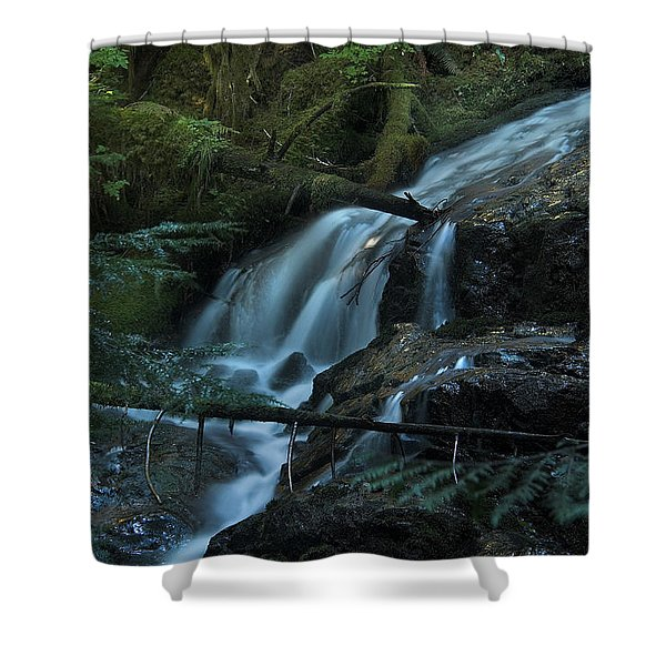 Forest Waterfall. Shower Curtain