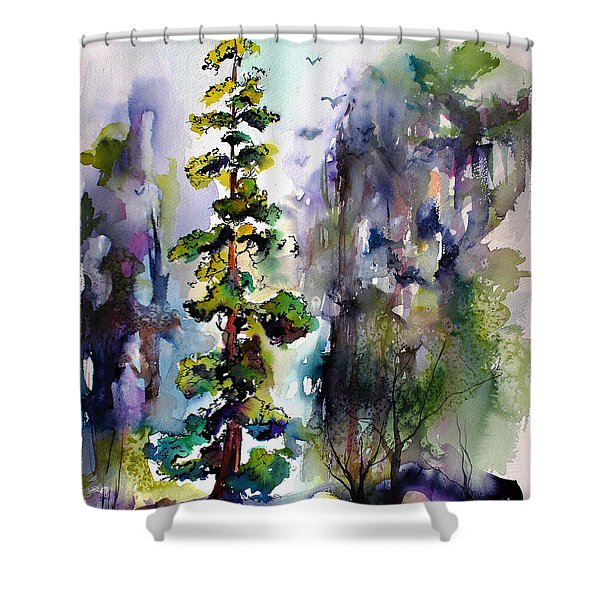 Forest With Redwood Trees Shower Curtain
