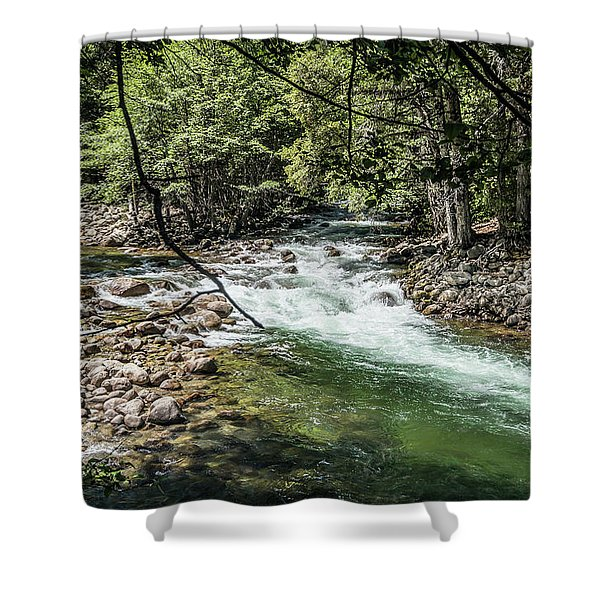 Fork In The Road- Shower Curtain