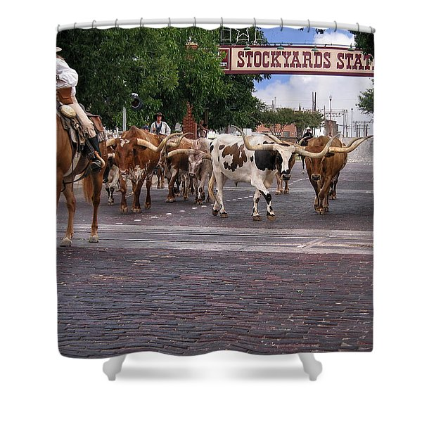 Fort Worth Cattle Drive Shower Curtain