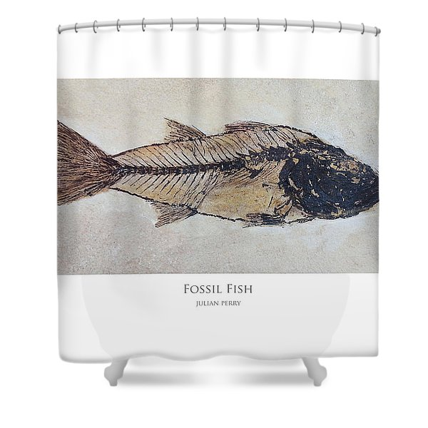 Fossil Fish Shower Curtain