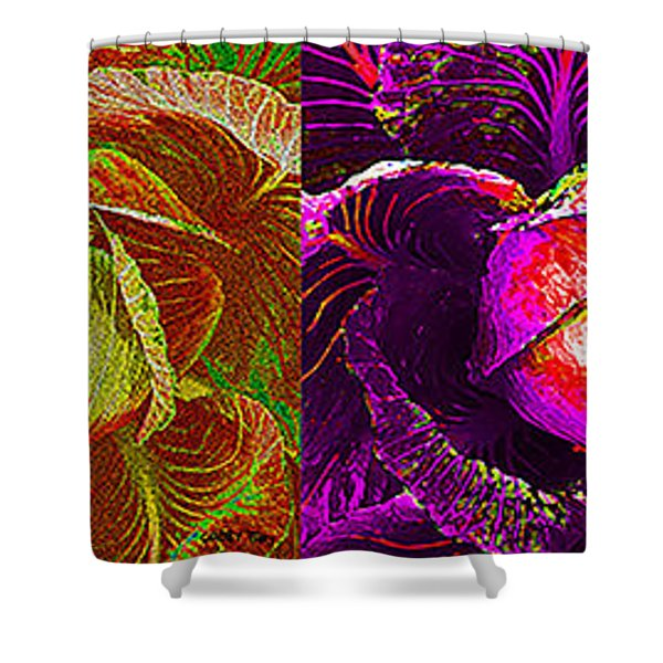 Four Cabbage  Shower Curtain