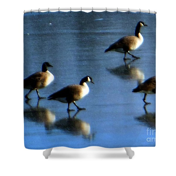 Four Geese Walking On Ice Shower Curtain