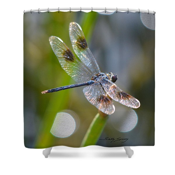 Four Spotted Pennant Shower Curtain