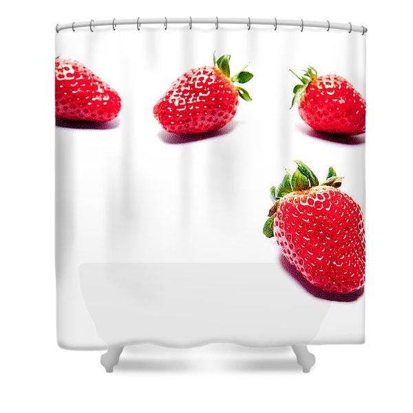 Four Strawberries Shower Curtain