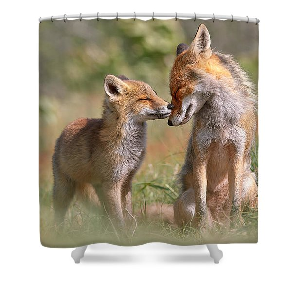 Fox Felicity II - Mother And Fox Kit Showing Love And Affection Shower Curtain