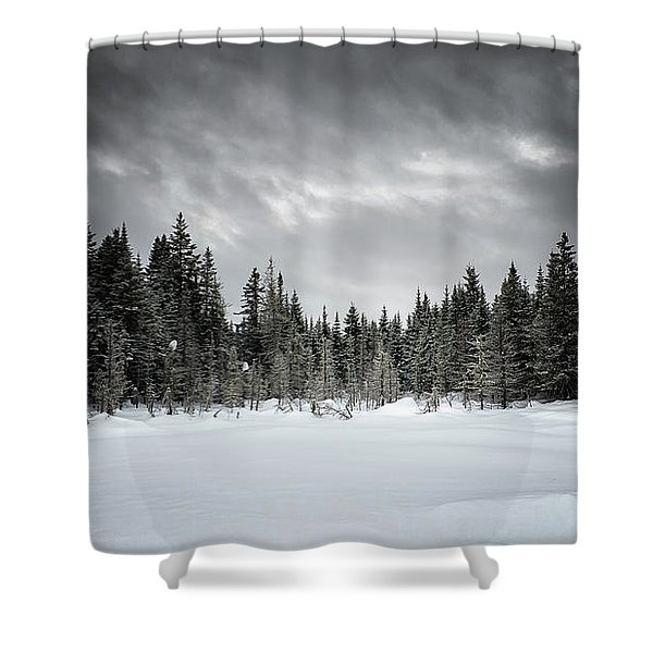 Fozen Shower Curtain