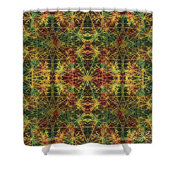 Fractal Anomaly 5 Shower Curtain