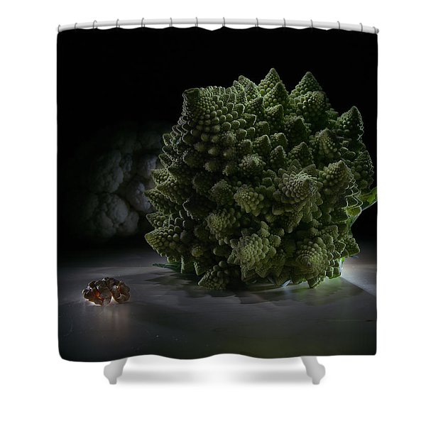 Fractal Supper Shower Curtain