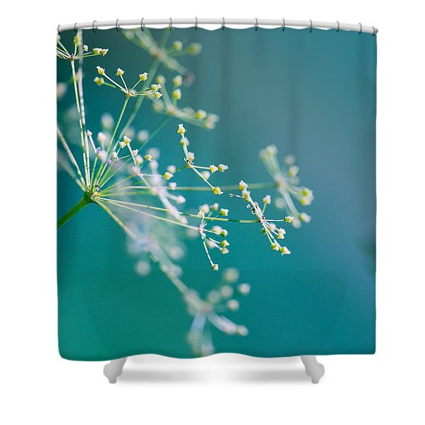 Fragile Dill Umbels Shower Curtain
