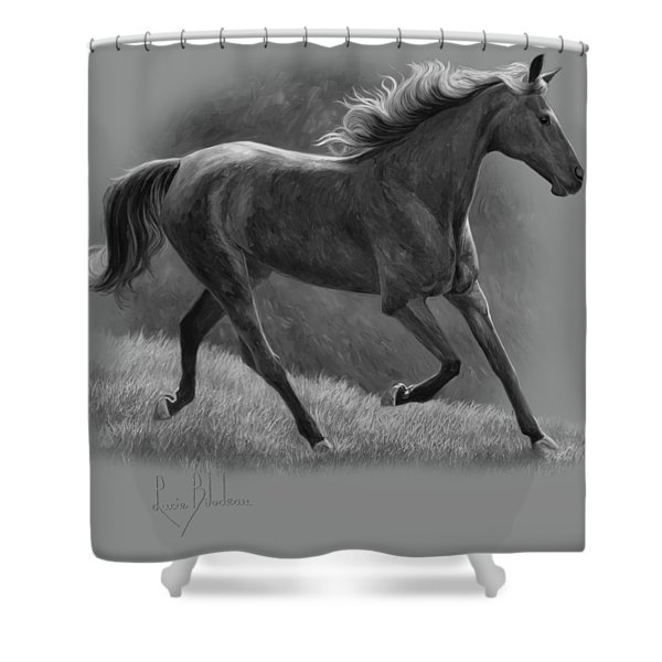 Free - Black And White Shower Curtain