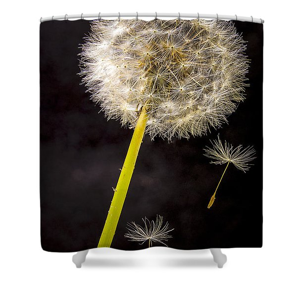 Free Fall Shower Curtain