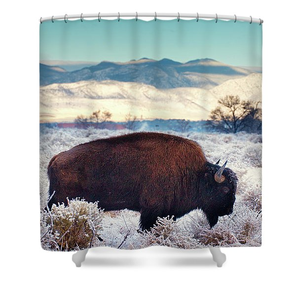 Free To Roam Shower Curtain