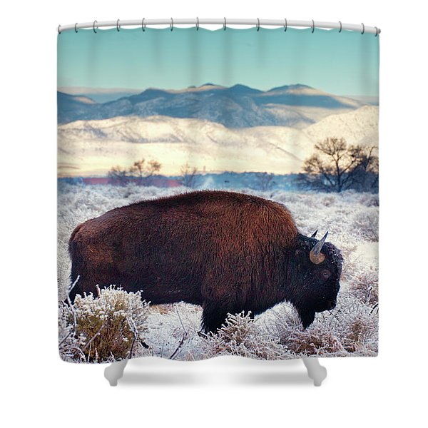 Shower Curtain featuring the photograph Free To Roam by John De Bord
