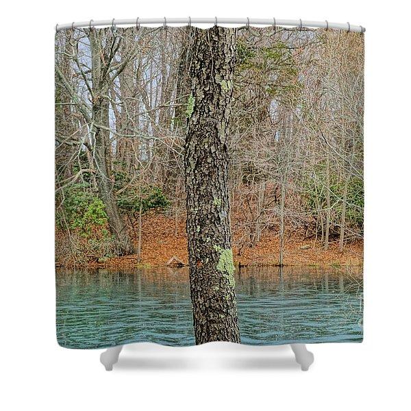 Freeze Frame Shower Curtain