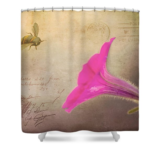 French Post Shower Curtain