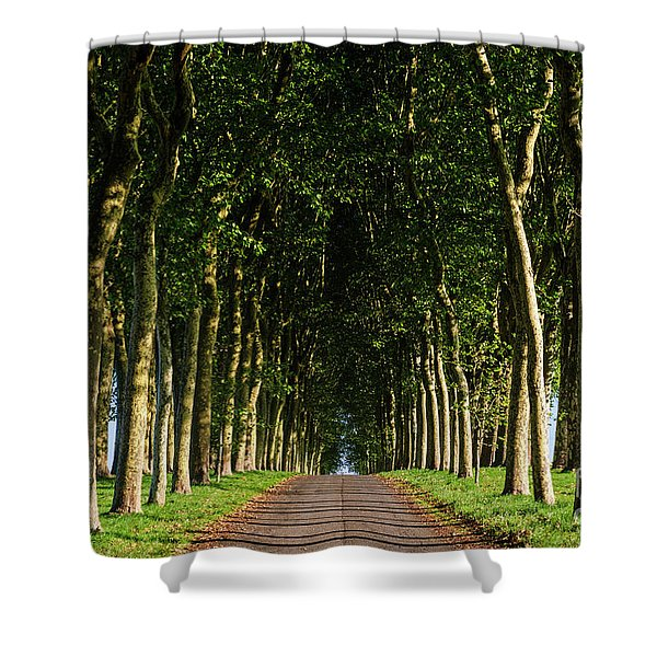 French Tree Lined Country Lane Shower Curtain