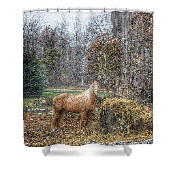 1016 - Frenchline Road Carmel Mare I Shower Curtain